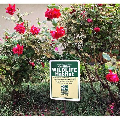 View of UUFF garden roses and certified wildlife habitat sign