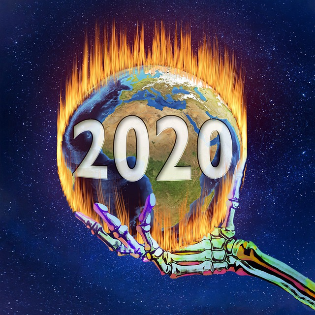 2020 burning earth